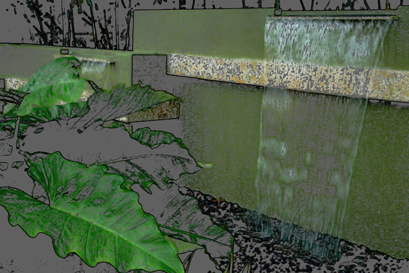 Water-Garden-Oasis_bg.jpg